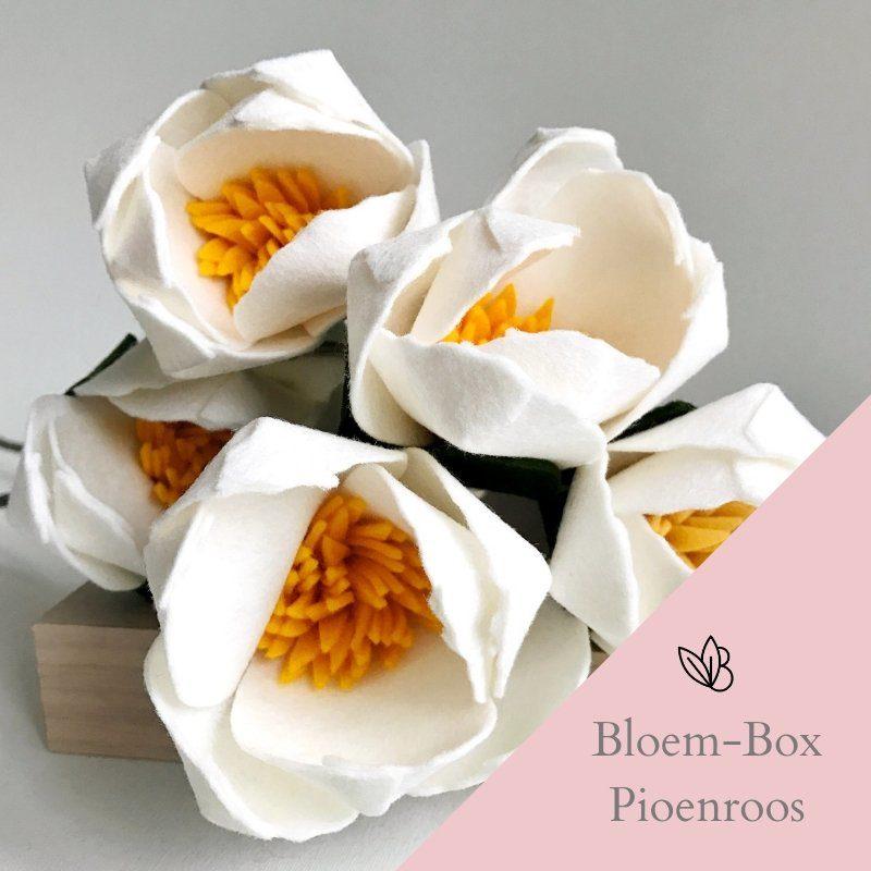Bloem-Box Pioenroos