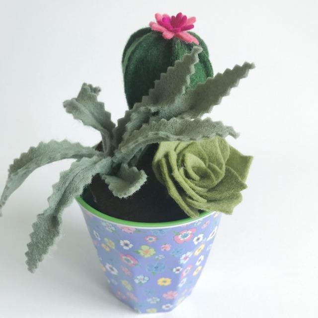 Workshop Vetplantjes maken