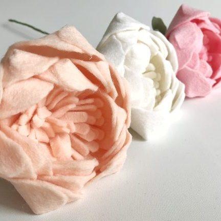 3 pioenrozen zalm, wit, roze